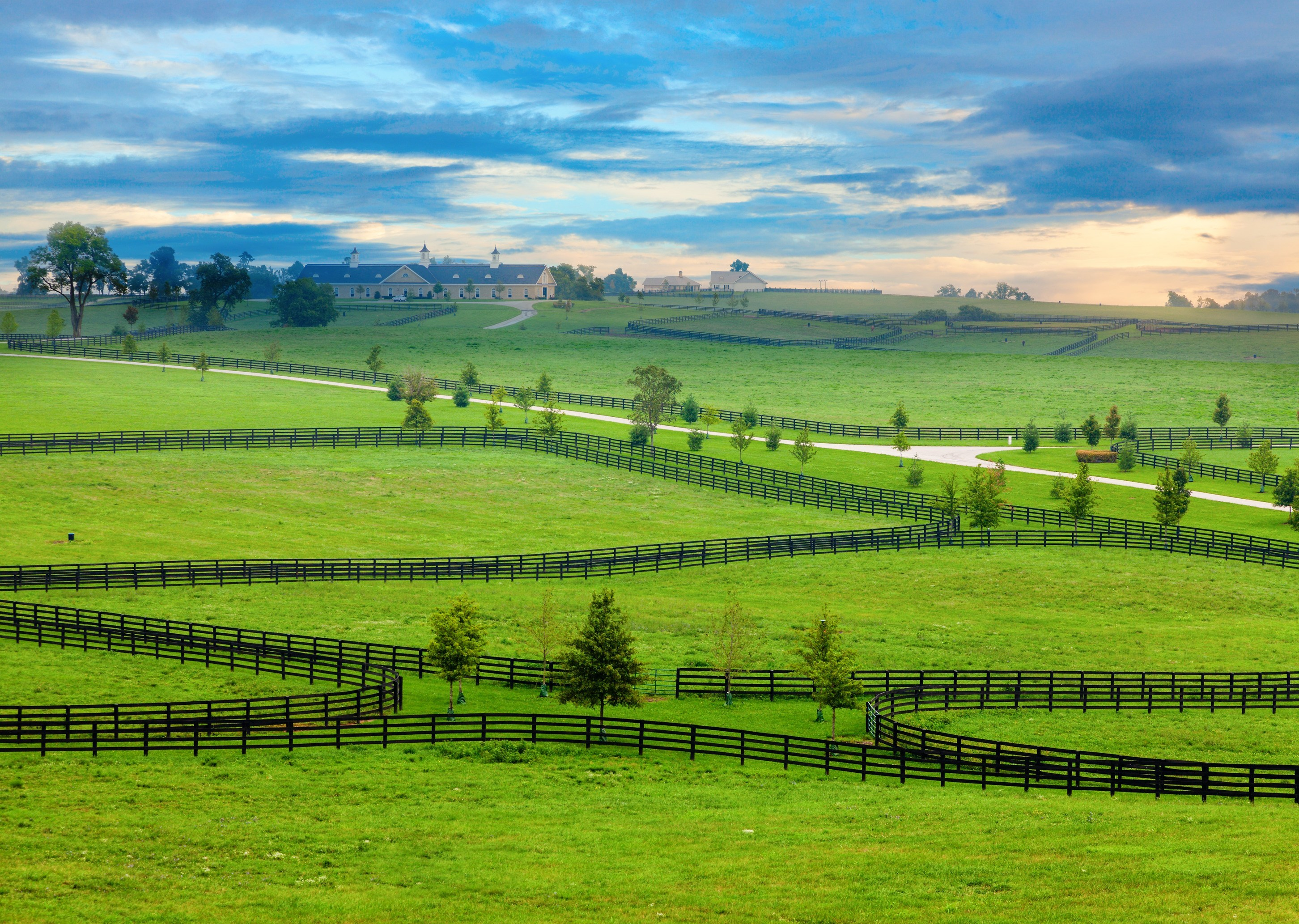 photodune-4161865-horse-country-l